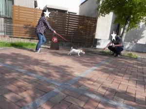 ブログ編集2